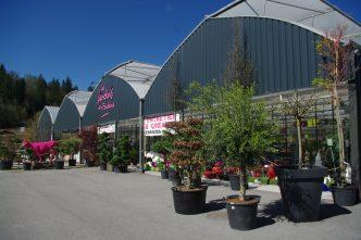 jardinerie les jardins de la fontaine jura et oyonnax