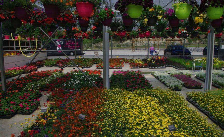 plantations de fleurs - espaces verts