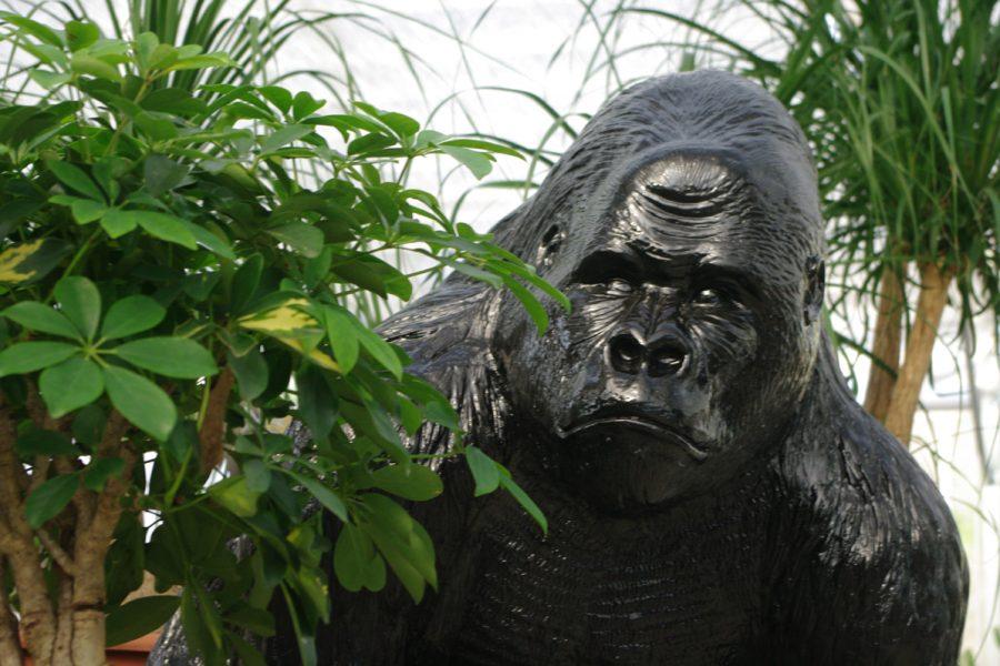 Animaux en résine – Jardinerie Les Jardins de la Fontaine